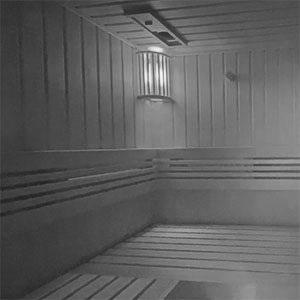Sauna Lautsprecher